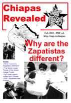 Chiapas revealed PDF file